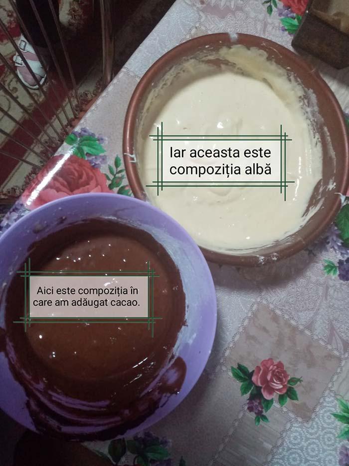 chec cu cacao - babutiu tania - bun de la buni